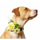 dog products trending products wedding flower dog collar