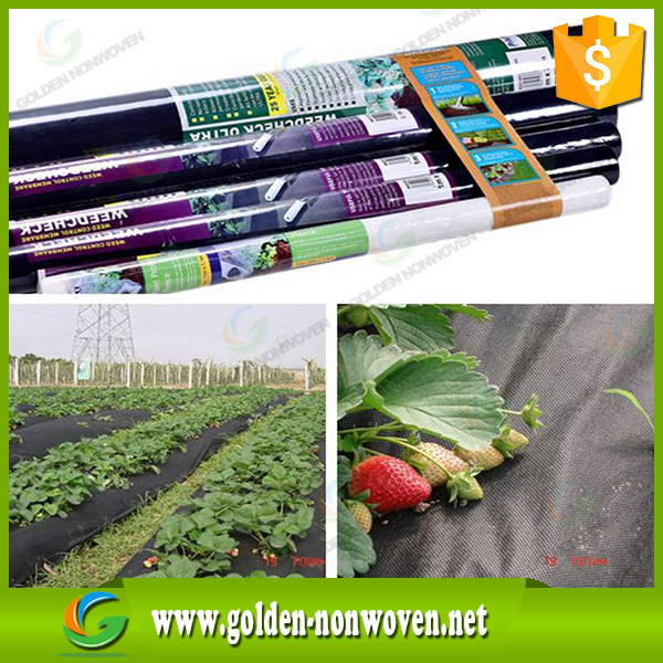 100% Biodegradable Floating Row Covers Offer nonwoven Plant Protection