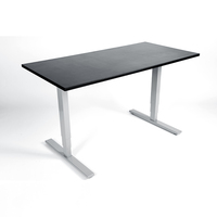 Ergonomic Stand Up Electric Height Adjustable Motor Sit Stand Desk/Table