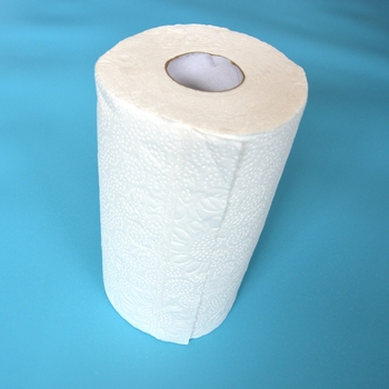 Cleaning Paper Towel Roll Jumbo Kitchen Paper Towel Coil Kitchen ...