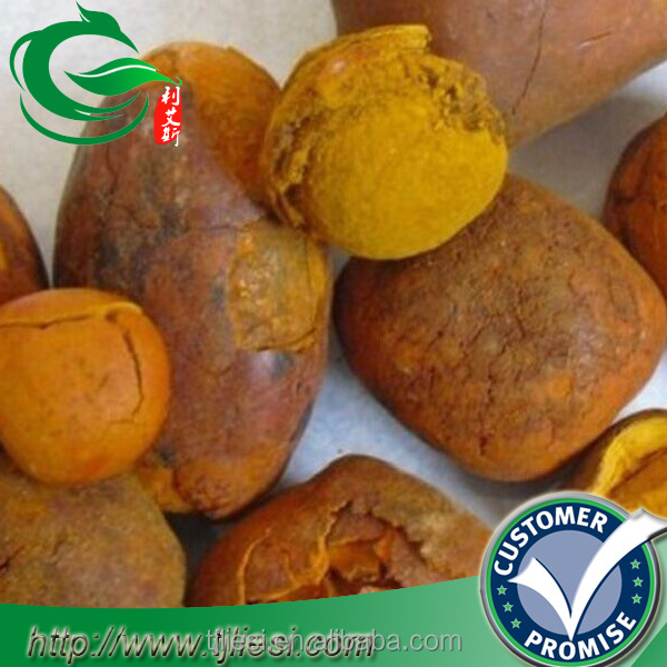 supply cattle ox cow gallstones bezoar with low price