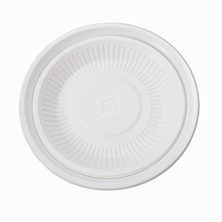 Cheap disposable food blister PP plastic take away plate