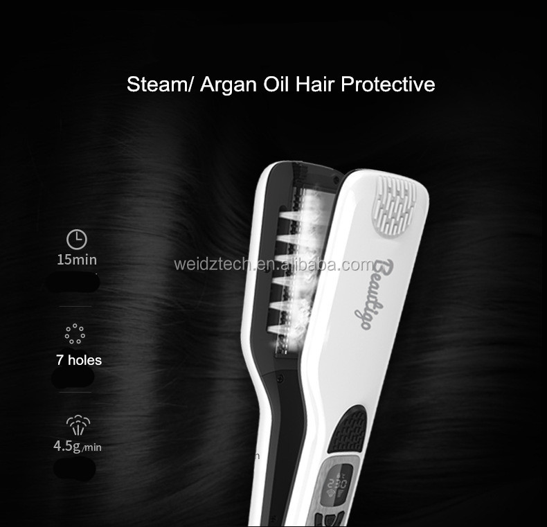 New Arrival Best Price Steam Hair Straightener With Temperature control