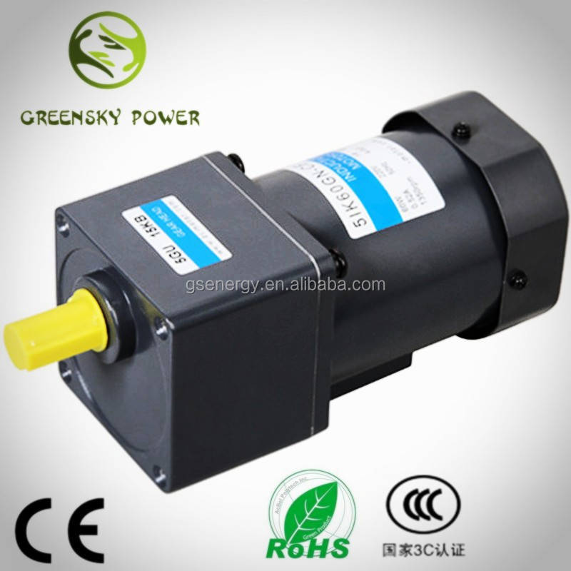 100V 220V 230V 60W 10rpm for BBQ motor, induction motor rotation