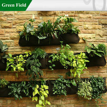 Green Field Living Walls Vertical Garden Vertical Gardening Ideas