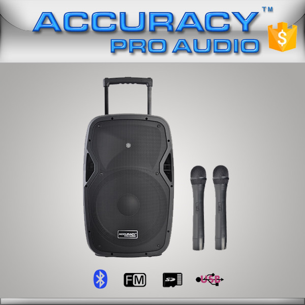 Portable Active Powered Pa Speakers System With Microphone ...