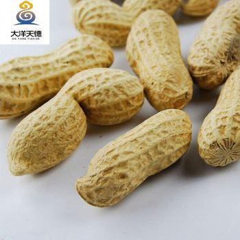 import roasted peanut in shell