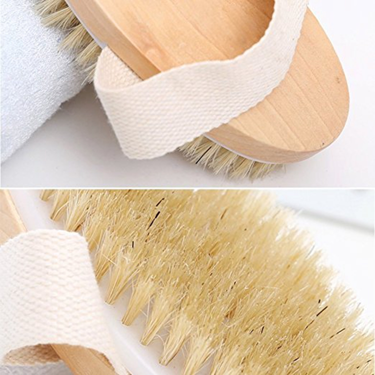 Body Brushes Dry Skin Brushing Bath & Shower Brush