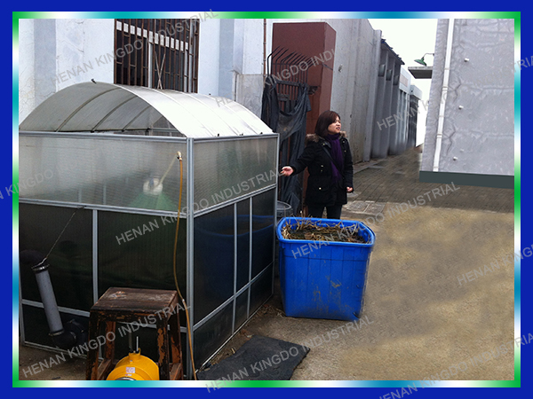 Small Biogas Plant To Generate Heat And Electricity For Home Use ...
