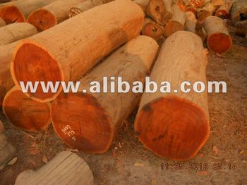 Burma Teak Wood Exporter Buy Teak Wood Buying Product On Alibaba Com