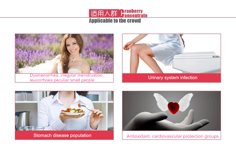 ISO Manufactory Supply Cranberry Extract powder/Cranberry Fruit Powder
