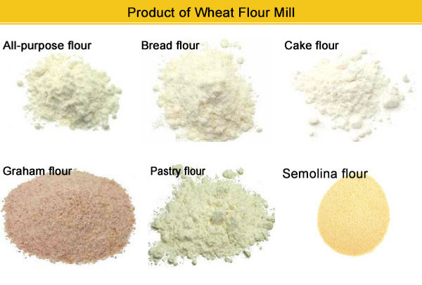 10t,20t,30t,40t,50t,60t,70t,80t wheat flour mill plant/wheat flour mill price