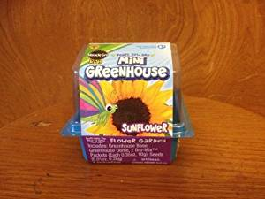 Miracle Gro Kids Mini Greenhouse Sunflower by Miracle Gro Lawn Products