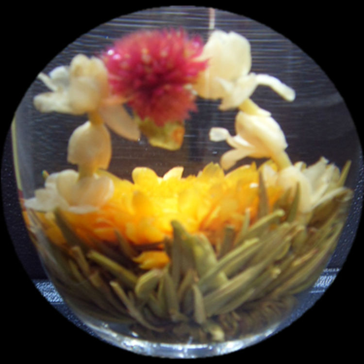 Twin Dragon Play Pearl Blooming Tea - 4uTea | 4uTea.com