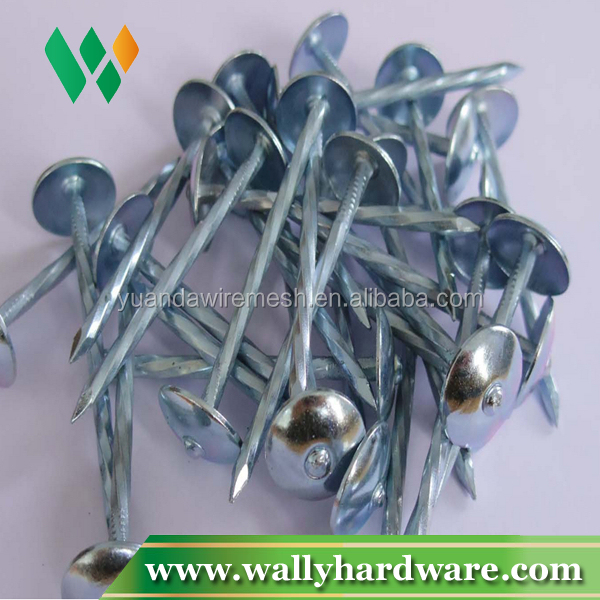 Zinc Coated Umbrella Head China Supplier Roofing Nail