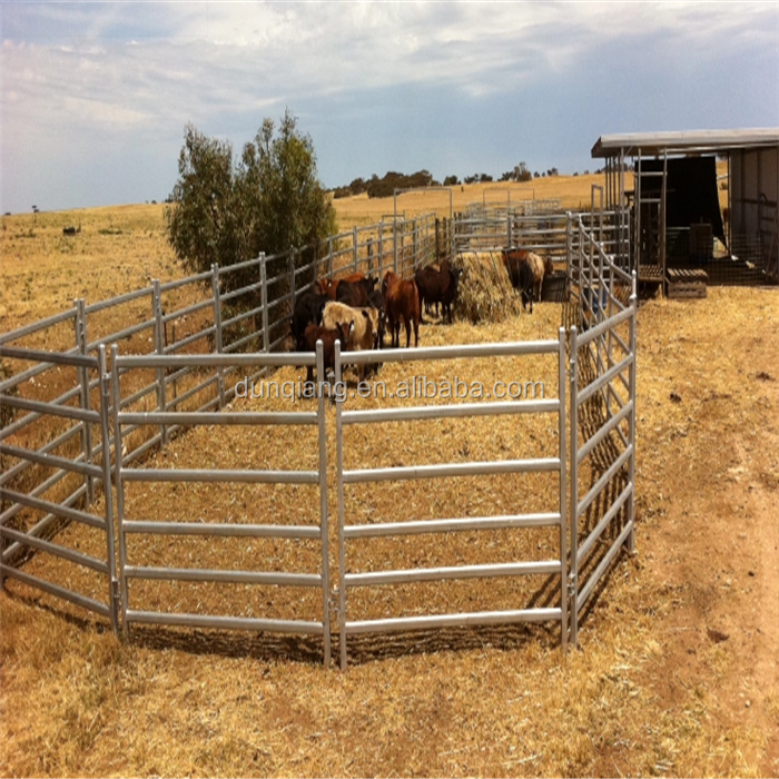 cattle panels-004.png