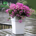 Pot Plant Pots Colorful Plant Pot 2015 Bright Color Flower Pot And Plant Pots Large Decorativewith Tall Square Planters