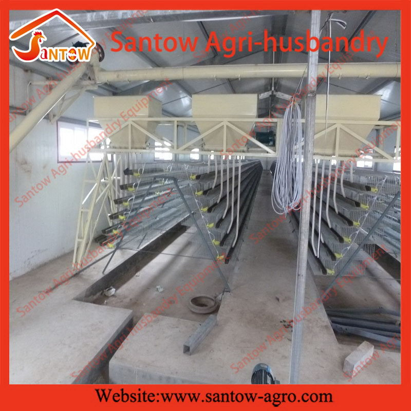 Highly Automatic Quail Farming Equipment - Buy Highly ...