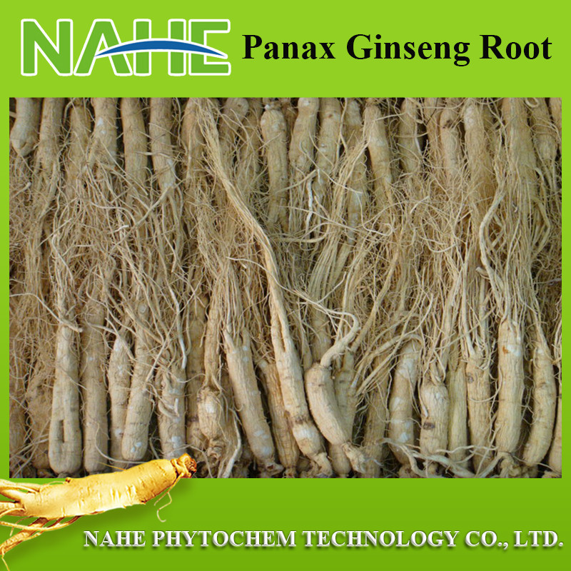 Function For Anti-aging,Dried Ginseng Root,Factory Outlet Price ...