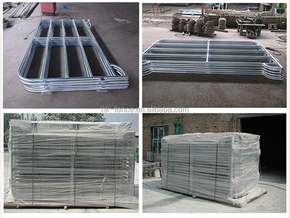 Round Rails Galvanized Pipe Horse Fence Panels For Cattle