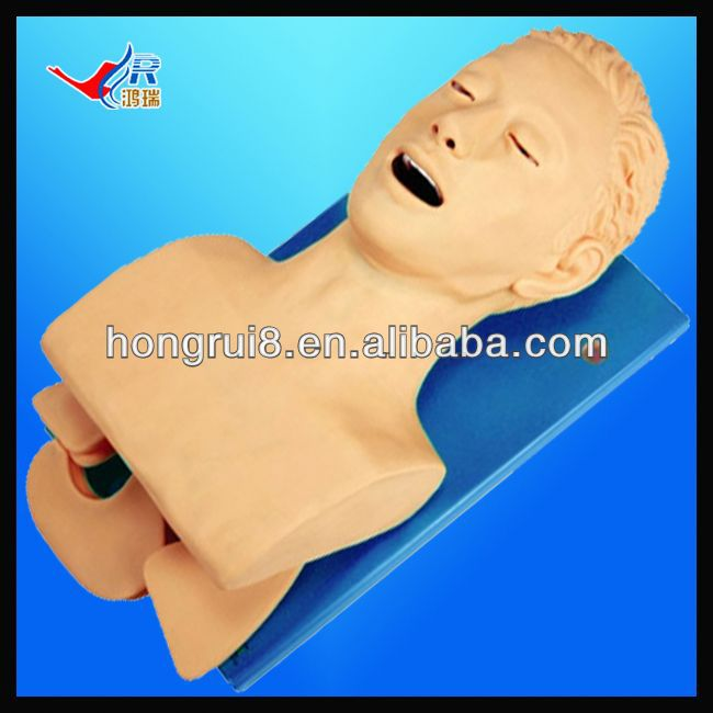 ISO Oral and Nasal Intubation Manikin, Electric Intubation Training model, human trachea intubation model
