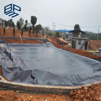 Plastic pond for fish and pool liner geomembrane with non for Koi pond plastic pool