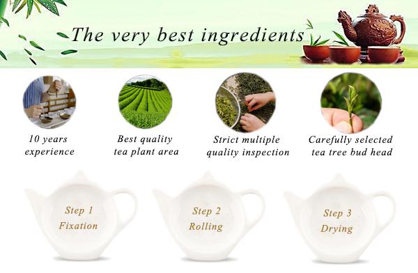 Lifeworth wholesale fresh green tea private label - 4uTea | 4uTea.com
