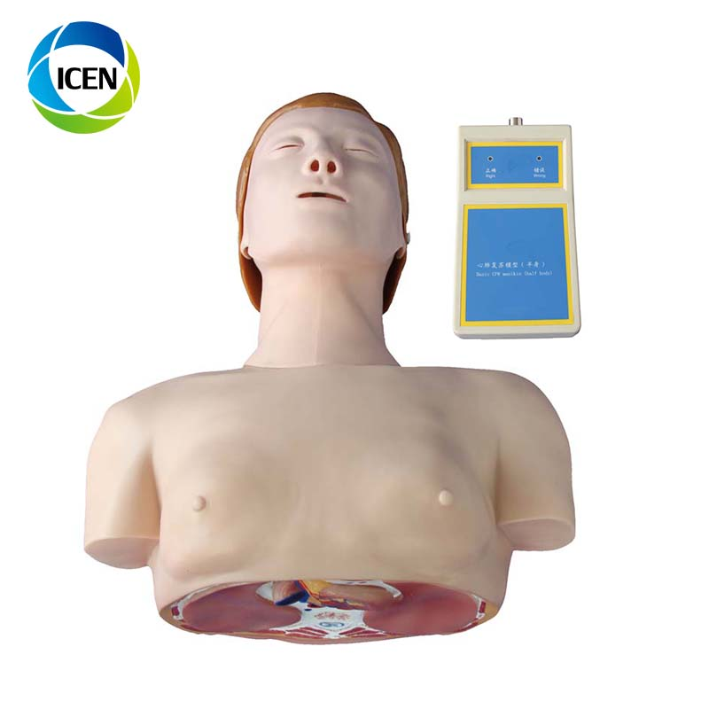 IN-402 Medical First Aid Nursing Whole Body Basic CPR Manikin Style 100 (Male / Female)