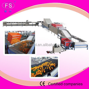 Fruit Washing and Grading Machine /Fruit Grading Machine/ Automatic Fruit Weight Grading Sizer