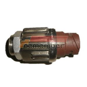 81255200171 81255200134 Brake Light Switch for MAN truck
