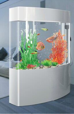 Wholesale Acrylic Fish Tank / Plexiglass Fish Aquariums China ...