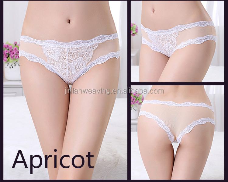 Sexy Lace Floral Briefs Transparent Lingerie Girls Nylon Bikini Panties For Women