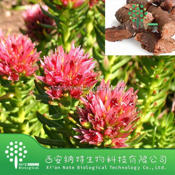 100% Natural well effective enhancing- immunity Rhodiola Rosea P.E./Rhodiola Rosea extract/ 4% Salidroside by UV