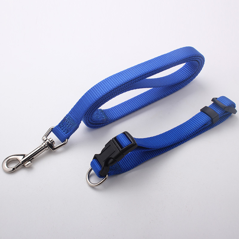 Custom fashional dark blue nylon dog leash for hot sale