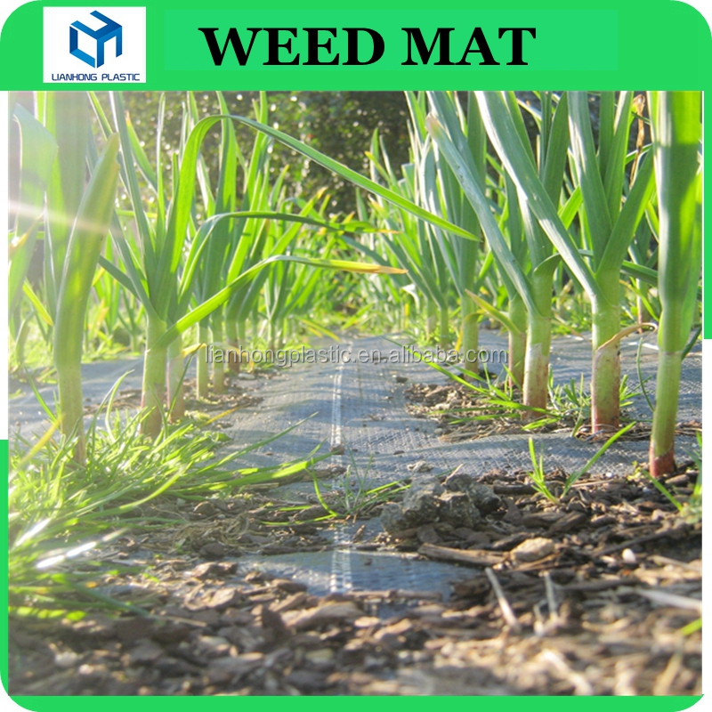 Woven Plastic ground cover weed mat for farmland