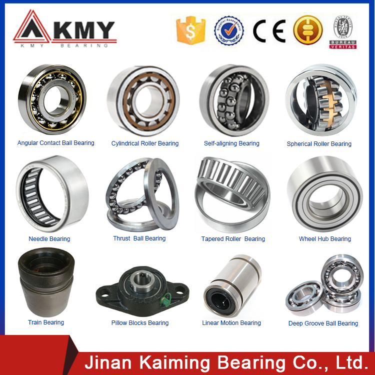 Square Bore Bearing Agricultural Machinery Bearing Dnf245/10