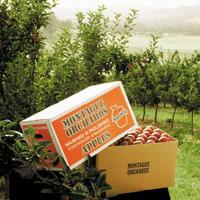 more than 1000 custom fruit box design fruit vegetable package vegetable fruit packaging