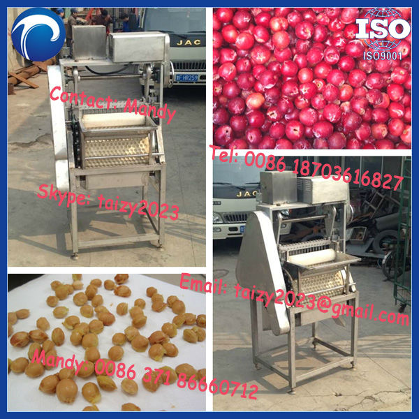 electric cherry pitter machine,commercial cherry pitter 0086 18703616827