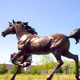 Hot Selling Garden Decoration Bronze Life Size Horse Sculpture