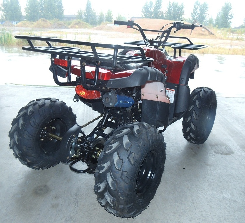 Chain Drive Transmission System125cc kids atv cheap dune buggy for sale with eec