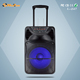 150W outdoor subwoofer DJ trolley portable speakers with Wireless MIC