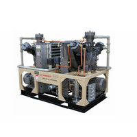 Industry Factory Mini Oil Free Dry Oiless Air Compressor