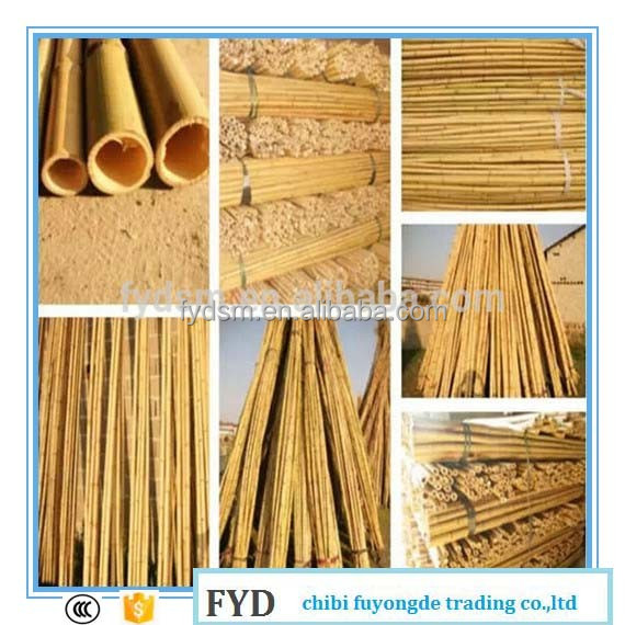 High Quality Gardening Bamboo Poles/canes/stakes/sticks Price Best ...