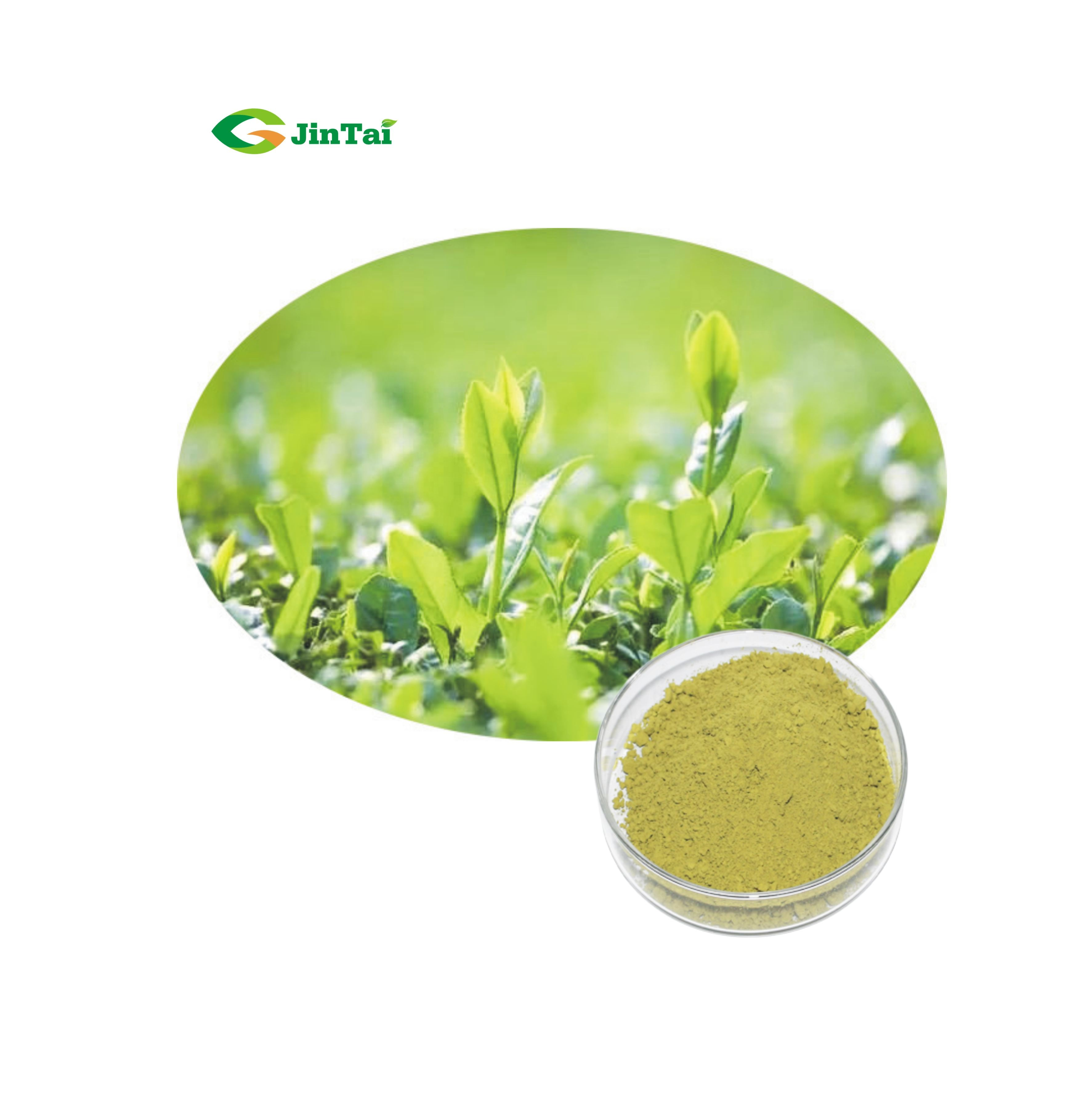 100% Water Soluble Greentea Matcha Matcha Tea Powder - 4uTea | 4uTea.com