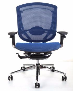 Gtchair Blue Mesh Ergonomic Office Chair - Buy Ergonomic Office ...