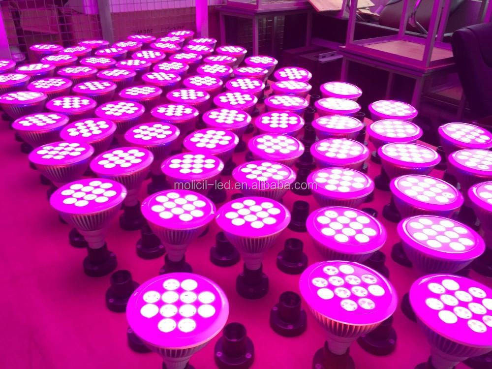 Hydroponics Equipment Hemp Epistar Led Grow Light Cob 50w Led Chip ...