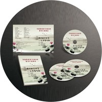 Duplication Sevice Cd Dvd Disc Copy