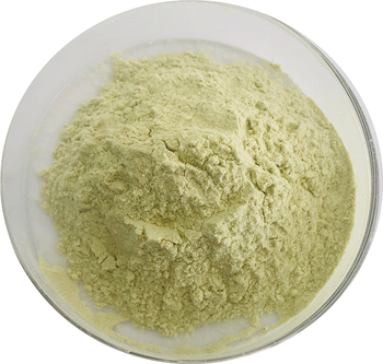 Kosher factory certified Dehydrated zucchini powder bulk zucchini powder zucchini powder nutrition