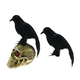 Black Crow on Skulls Halloween Decoration Spooky Haunted House Raven