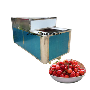 Solon best selling good quality cherry pitting machine small bizness